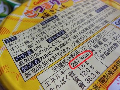 DSCN3492.JPG.jpg